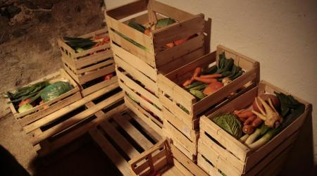 Cagettes de légume bio locaux